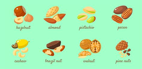 open access  current perspectives  tree nut allergy