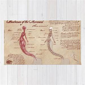 Anatomy Of The Mermaid Rug By Kazpalladino