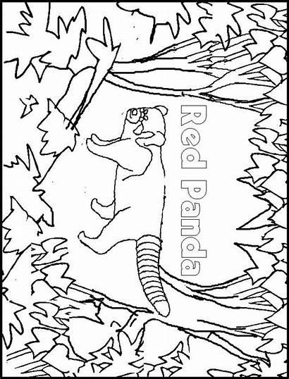 Panda Coloring Pages Animals Printable Sheet Template