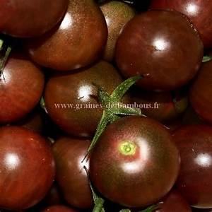 Planter Graine Tomate : tomate black cherry graines graine semences semence bio tomate cerise black cherry tomate ~ Dallasstarsshop.com Idées de Décoration