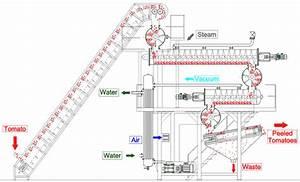Alfaterna Steam Peelers Schematic