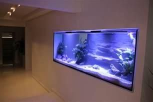 Custom Home Aquarium Wall
