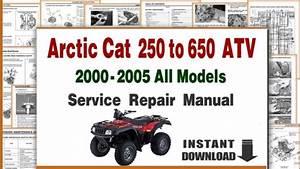 2001 Arctic Cat 250 Wiring Diagram