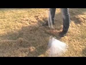 Rasenpflege Nach Dem Winter : rasenpflege nach dem winter rasen ausrechen youtube ~ Orissabook.com Haus und Dekorationen