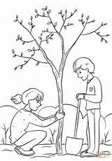 Planting Tree Clipart Draw Coloring Boy Drawing Easy Colorare Albero Plantation Outline Kolorowanka Sadzenie sketch template