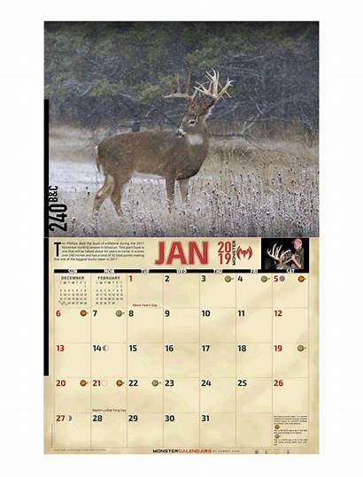 Calendar Whitetail Monster Deer Calendars