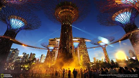 Wallpaper Of by The Nation Amidst The Supertrees National Geographic