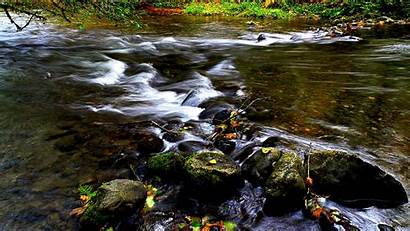 Stream River Background Backgrounds Wallpapers Campbell Bc