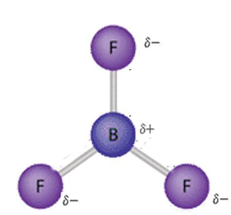 Chemistrypolar And Nonpolar Molecules