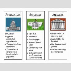 Three Branches Of Government Trifold Handout By Rachel Glenn Tpt