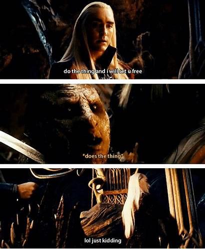 Thranduil Legolas Hobbit Funny Smaug Desolation Star