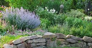 Pflanzen Für Trockenmauer : trockenmauern planen anlegen und bepflanzen mein sch ner garten ~ Orissabook.com Haus und Dekorationen