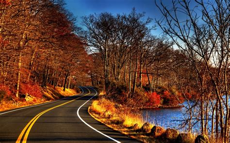 road trees  leaves autumn hd wallpaper