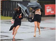 10 ganz lustige Bilder von Menschen und Tieren im Sturm