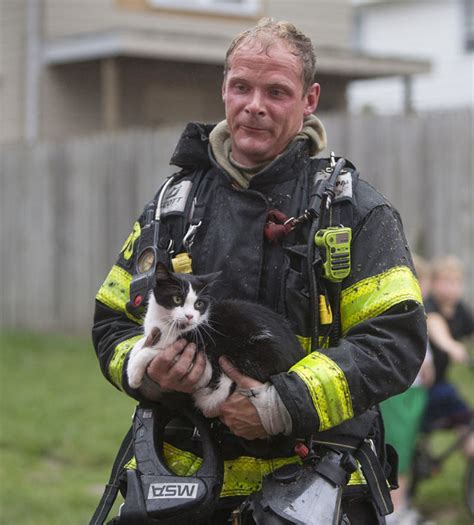 Firefighters Rescue Cat From Burning Home  Life With Cats