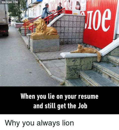 Always Lie On Your Resume by 25 Best Memes About Why You Always Why You Always