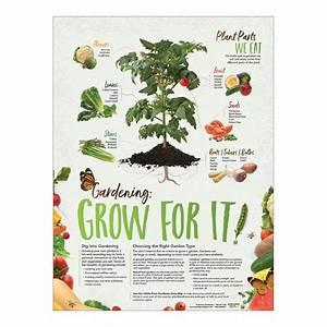 School Garden Poster