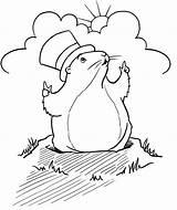 Groundhog Coloring Popular sketch template