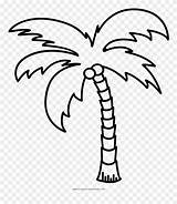 Palm Tree Coloring Clipart Outline Palmera Colorear Dibujo Ultra Pinclipart Dlf Kindpng Pngkit sketch template