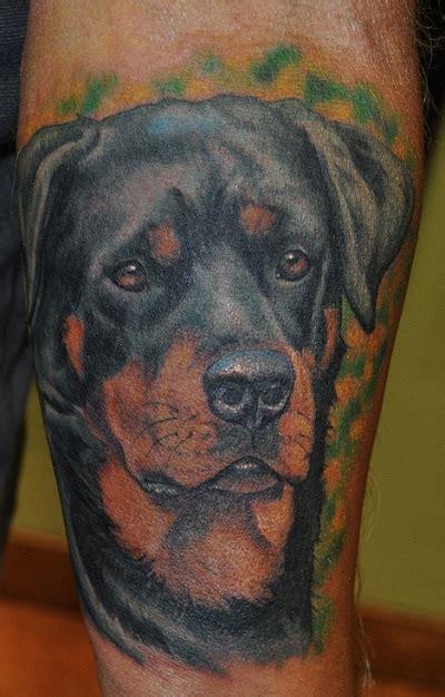 coolest rottweiler tattoo designs   world