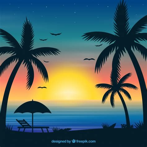fondo de verano  atardecer  palmeras descargar