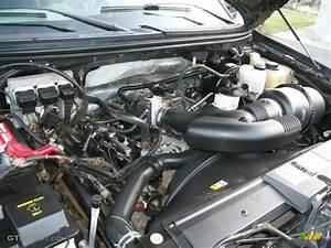 2008 Ford F150 Xlt Supercrew 4x4 4 6 Liter Sohc 16
