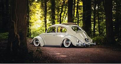 Beetle Volkswagen Wallpapers Road Forest Sunroof Sunshine