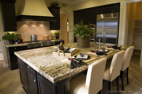 black kitchen cabinet ideas pictures of kitchens traditional black kitchen
