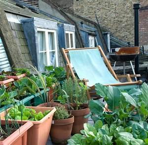 Pflanzen Für Dachterrasse : tipps f r urban gardening und pflanzen dem balkon welt ~ Michelbontemps.com Haus und Dekorationen