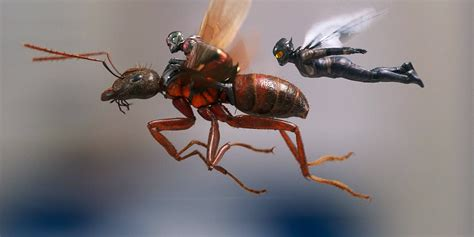 Antman And The Wasp Gets New Story Details & Images