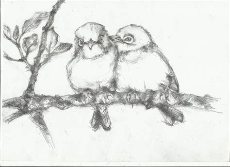 bird drawing nightwithdeer