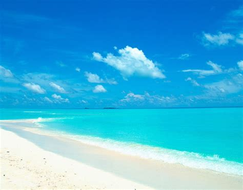 3d home planner destination events and wedding planner turks and caicos