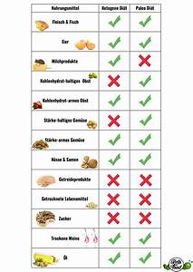 Ketogene Diät Berechnen : die ketogene di t versus die paleo di t der vergleich ~ Themetempest.com Abrechnung