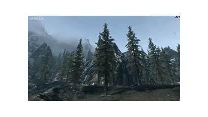 Trees Simple Mods Bigger Mod Skyrim Interest