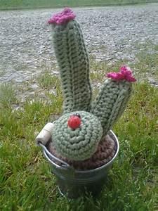 cactus uncinetto Per la casa e per te Decorare casa di Le cr su MissHobby