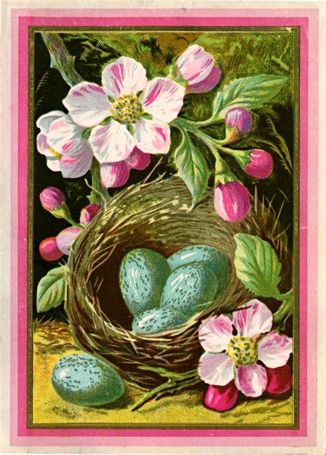 antique graphic bird nest  eggs  graphics fairy