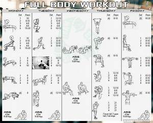 Bodybuilding Workout Plan