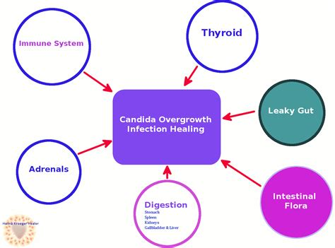 Candida Overgrowth Treatment Fast And 35 Symptoms
