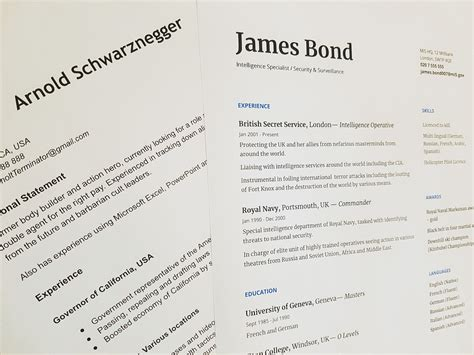 Resume Generator Reviews by Resume Capitalization And Guidelines Title