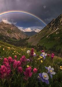 1485 best Nature ☾ images on Pinterest