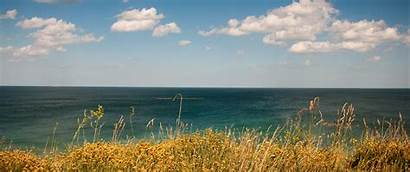 Coast Golden 1440 Ultrawide