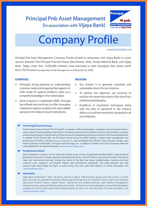 company business profile sample company letterhead