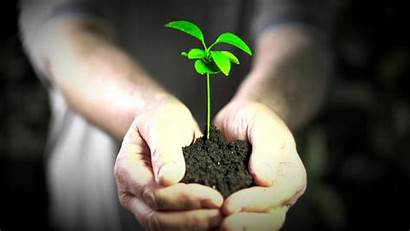 Environment Quotes Spiritual Environmental Respect Protect Quotesgram