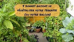 5 Bonnes Raisons De V U00e9g U00e9taliser Votre Terrasse  Ou Balcon