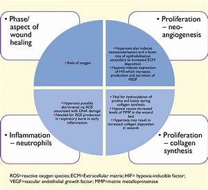 The Role Of Oxygen In Wound Healing