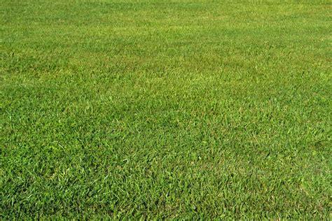 The Best Backgrounds Ever Stock Green Grass 1 By Jocarra On Deviantart