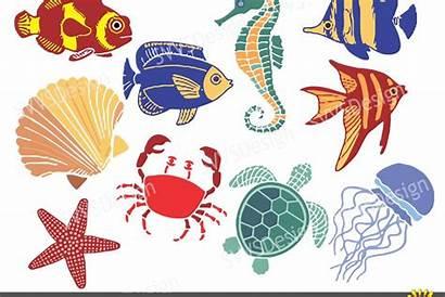Svg Clipart Vector Sea Ocean Creatures Vr