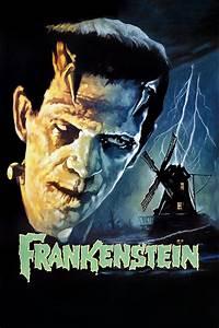 Frankenstein 1931 Moviesfilm Cinecom