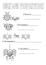 english worksheets bugs  prepositions
