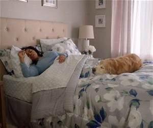 kmart home bedding commercial sleep like a dog With commercial bed sheets